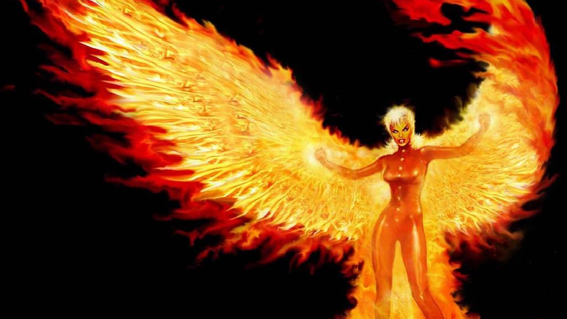 Phoenix Fondo De Pantalla Hd Fondo De Escritorio