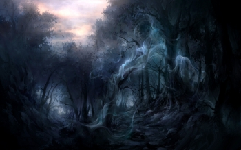 Dark - Forest Wallpapers and Backgrounds ID : 167117