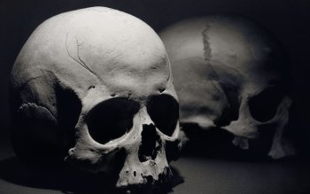 Dark - Skull Wallpapers and Backgrounds ID : 167555