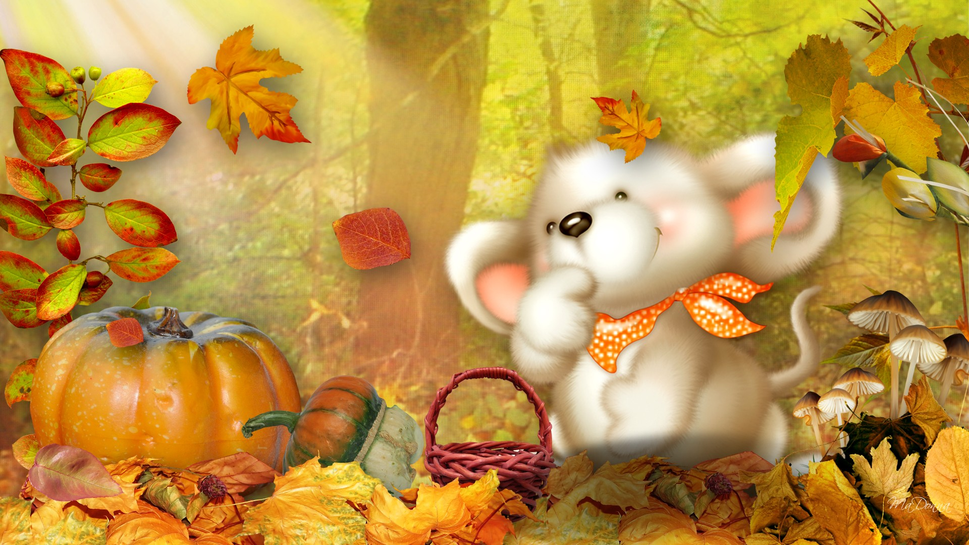 autumn pumpkin wallpaper widescreen