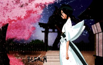 Anime - Bleach Wallpapers and Backgrounds ID : 16859