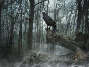 Preview Dark - Animal Art