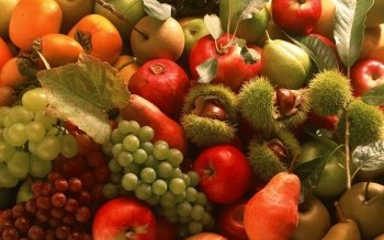 Food - Fruit Wallpapers and Backgrounds ID : 169977