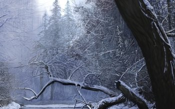 Artistic - Winter Wallpapers and Backgrounds ID : 171617