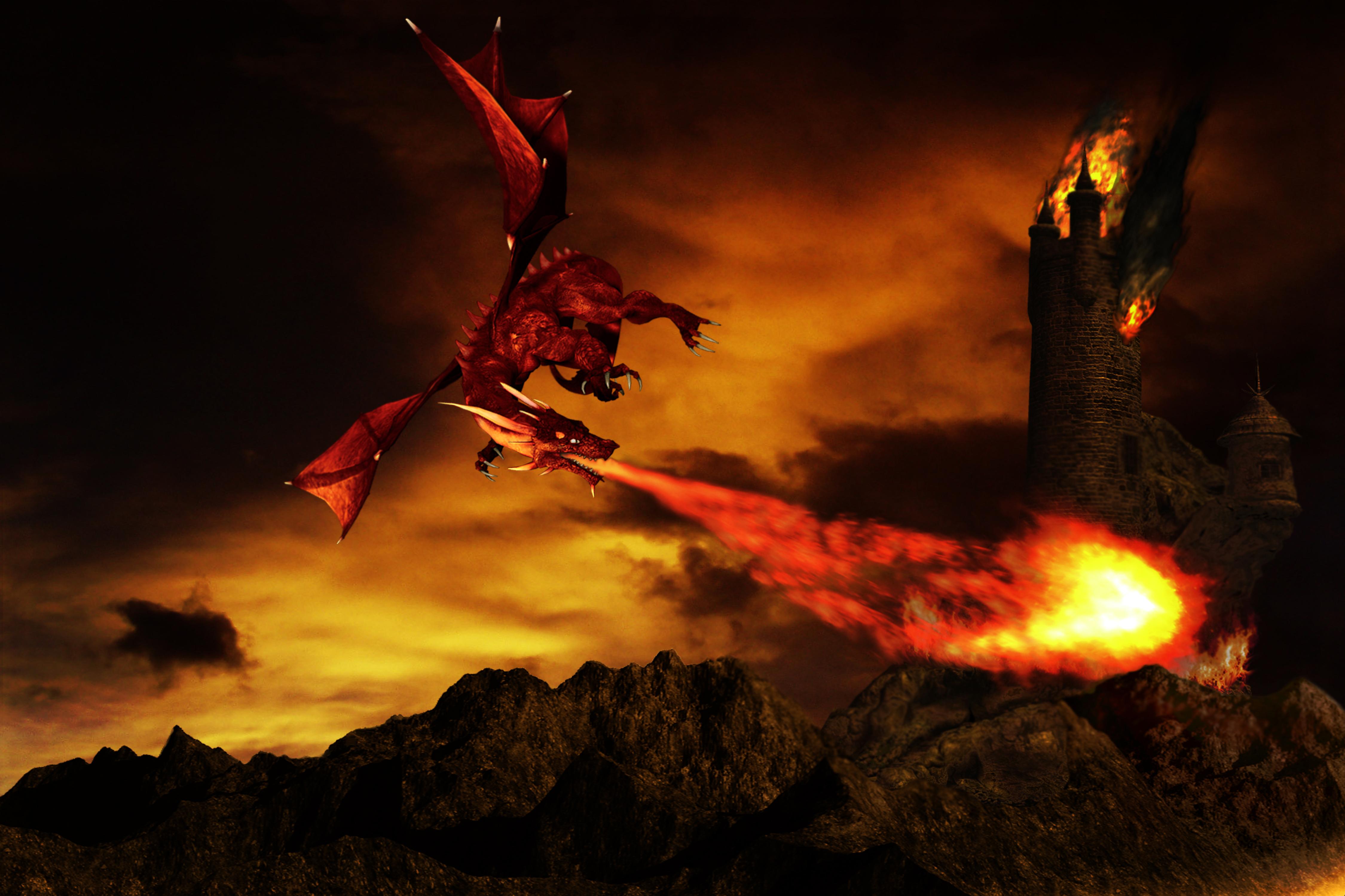 Dragon 4k Ultra HD Wallpaper | Background Image ...