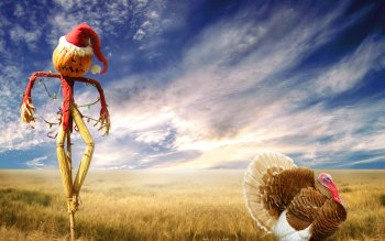 Holiday - Thanksgiving Wallpapers and Backgrounds ID : 176935