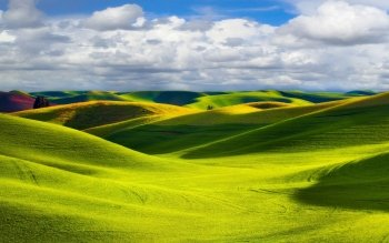 Earth - Field Wallpapers and Backgrounds ID : 177429