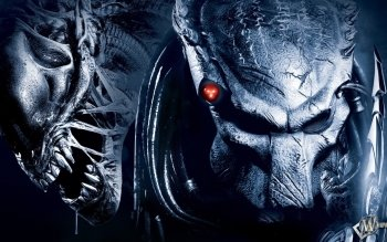 Filme - Alien Vs. Predator Wallpapers and Backgrounds ID : 178825