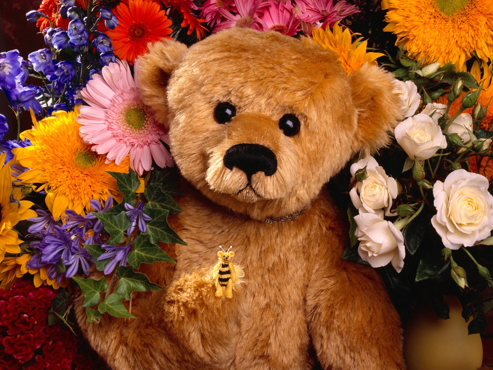 Animal - Bear  - Teddy Bear - Flowers Wallpaper