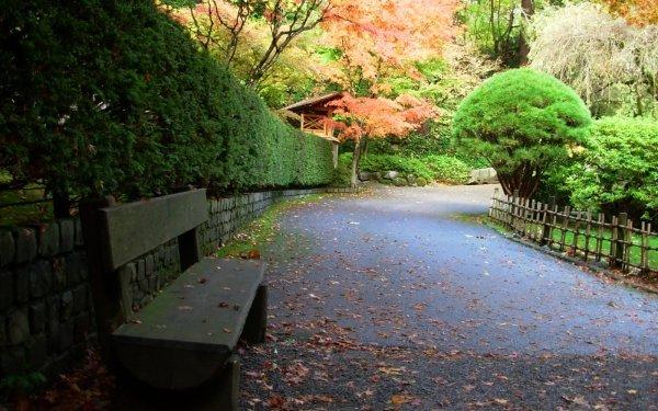 Fotografía Parque Banco Camino Árbol Fondo de pantalla HD | Fondo de Escritorio