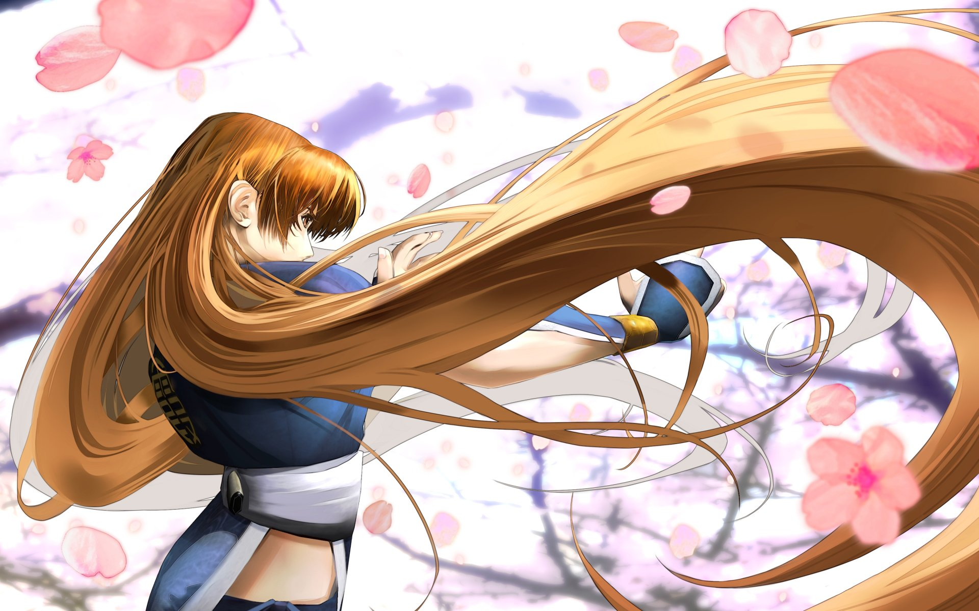 Wallpapers ID:184669