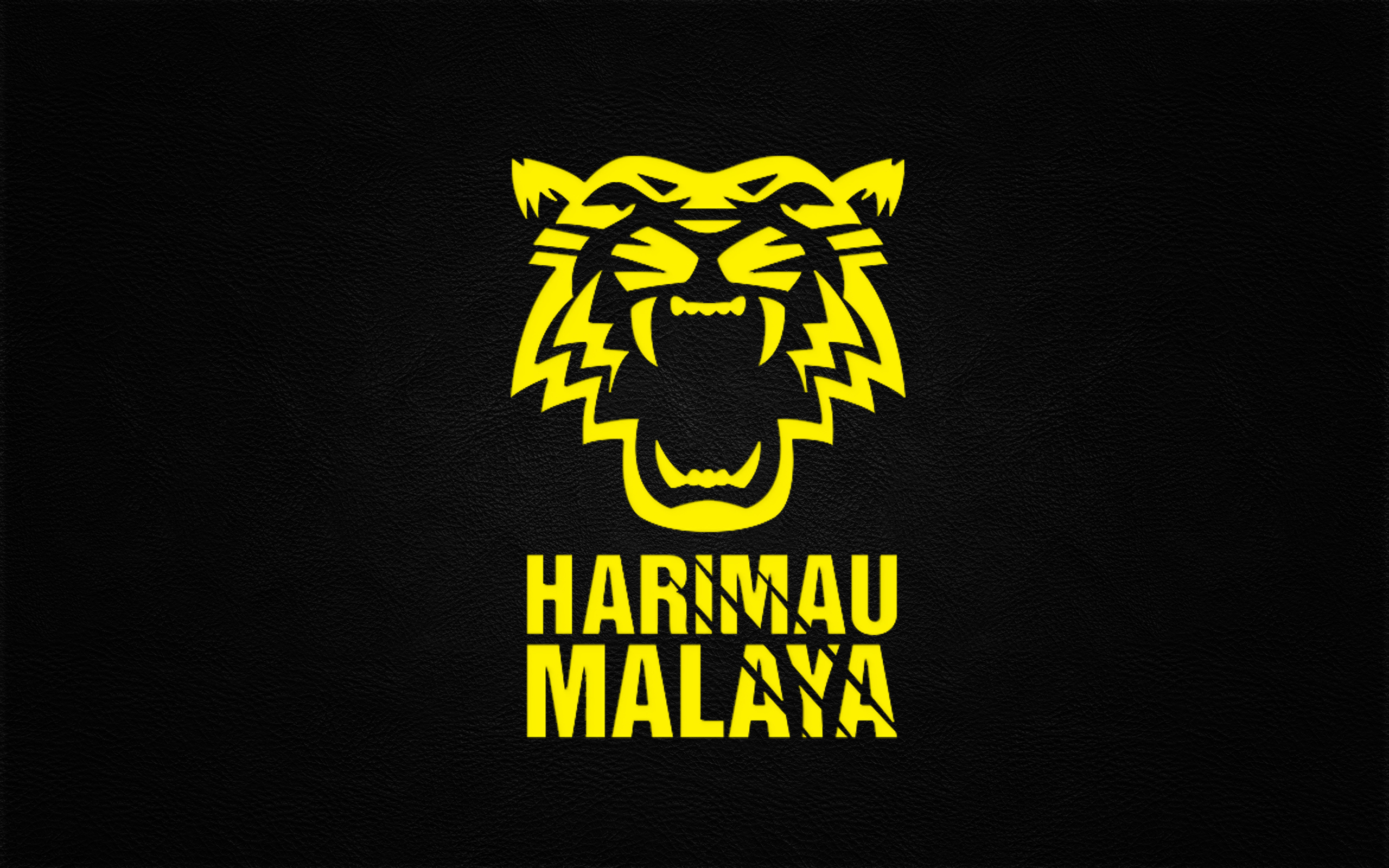 Sports - Malaysia National Football Team Wallpaper