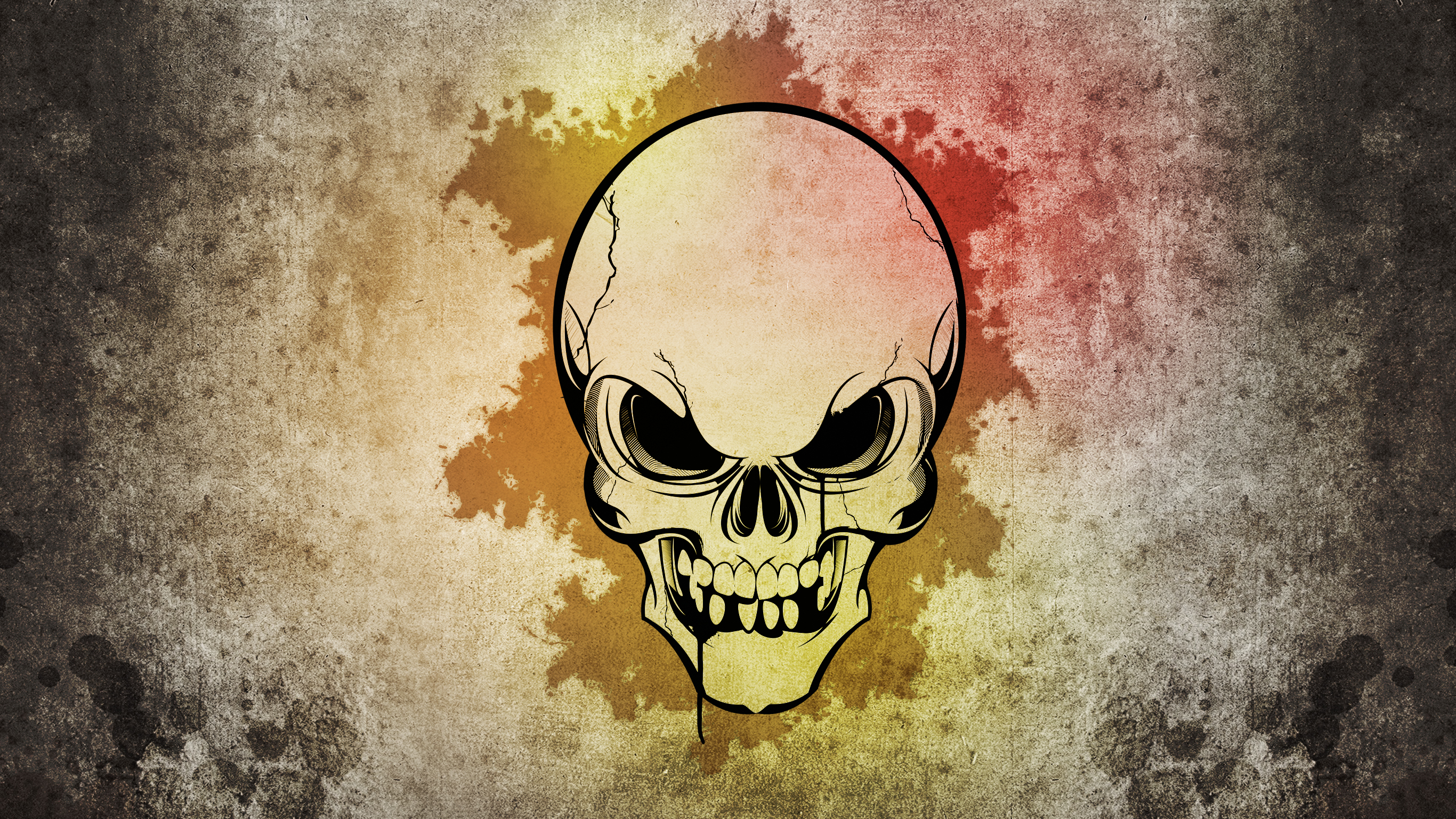 Skull Full HD Wallpaper And Background  2732x1536 ID187837