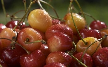 Alimento - Cherry Wallpapers and Backgrounds ID : 187657