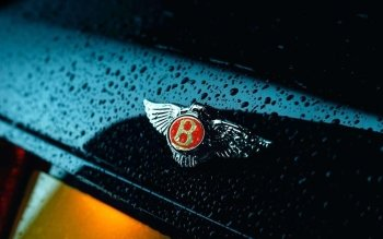 Vehicles - Bentley Wallpapers and Backgrounds ID : 188445