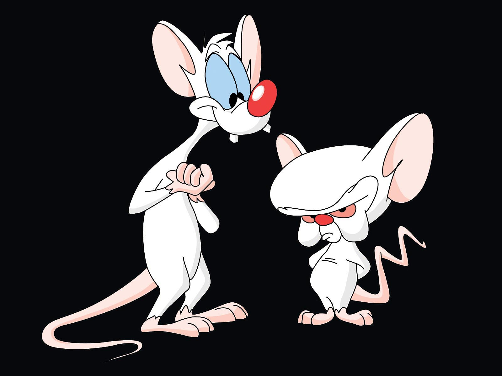 11 Pinky And The Brain...