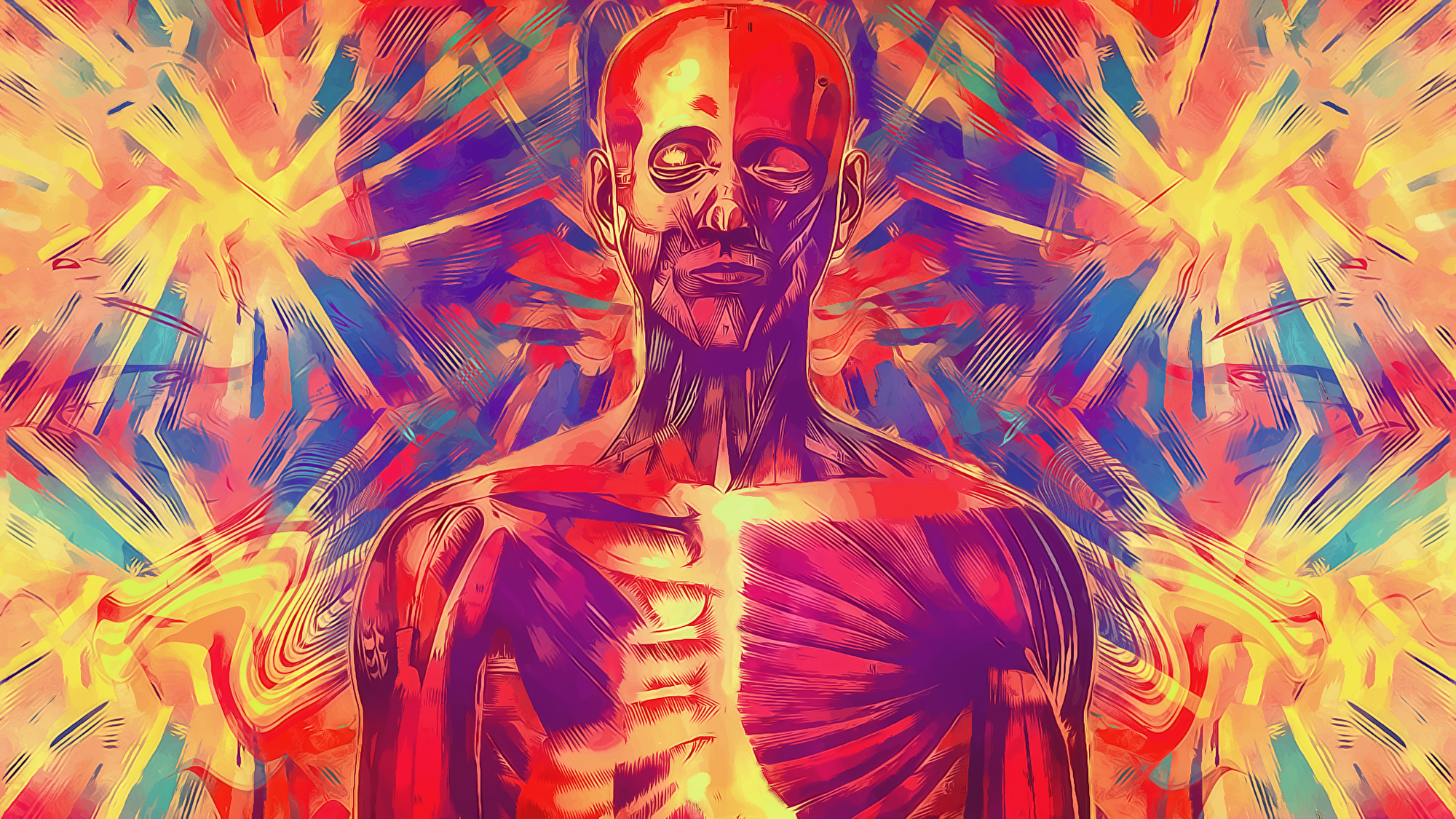 Anatomy Full Hd Wallpaper And Background Image 2000x1125 Id194545