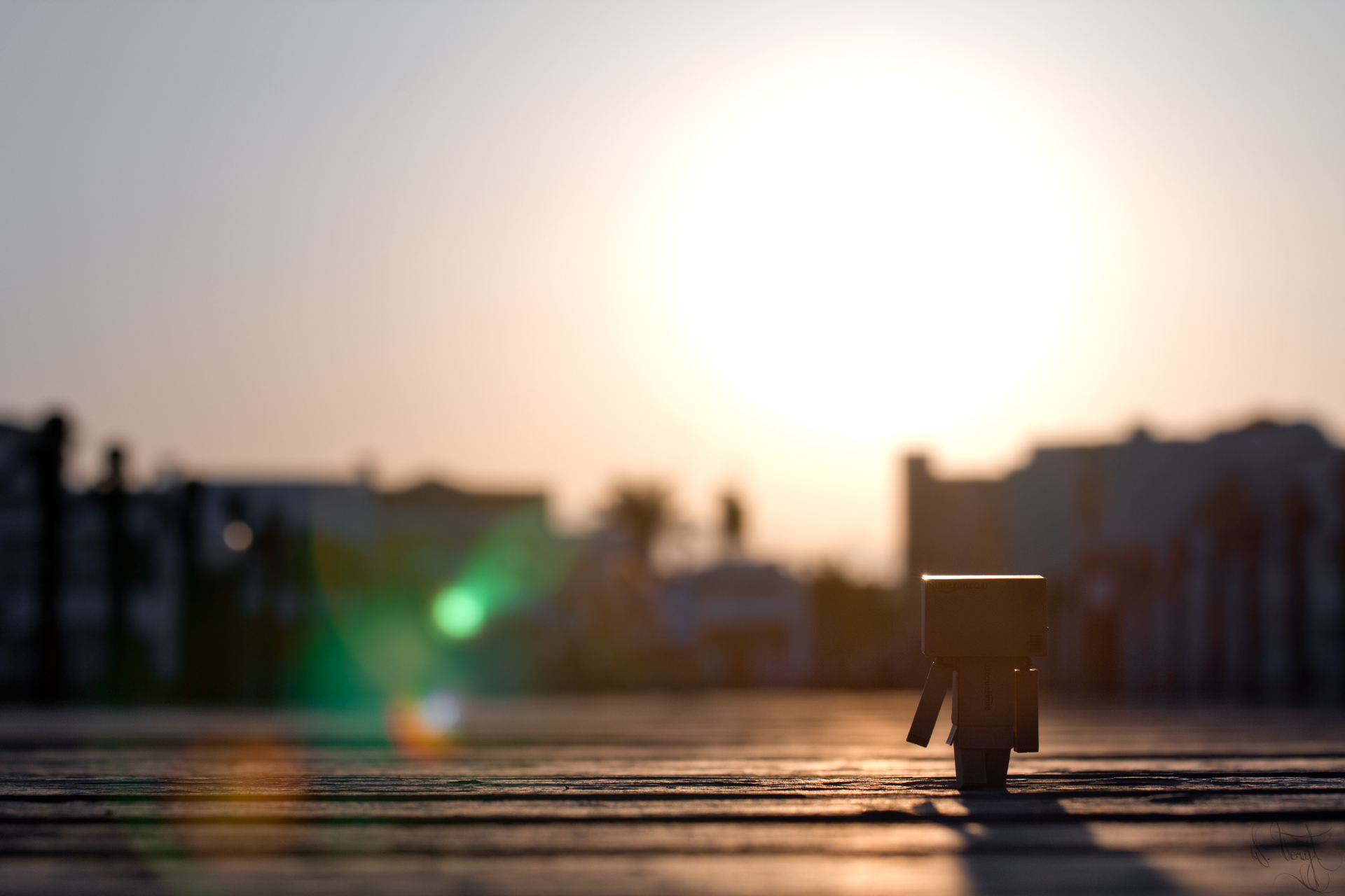 Danbo Takes A Walk HD Wallpaper