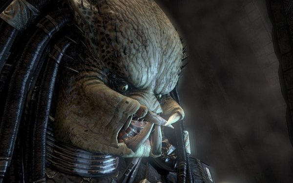 Sci Fi Predator Movie Alien HD Wallpaper | Background Image
