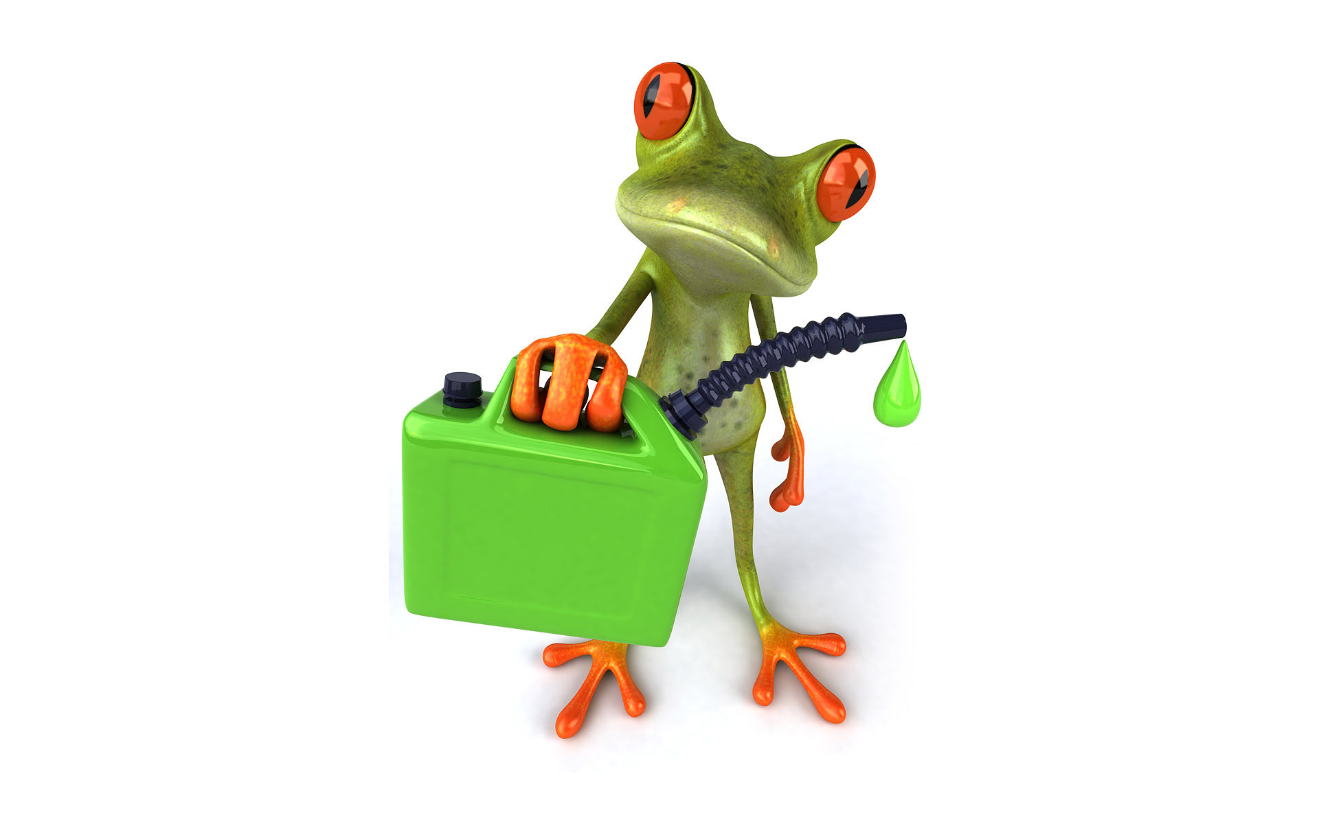Green frog hd wallpaper background image 1920x1200 - Frog cartoon wallpaper ...