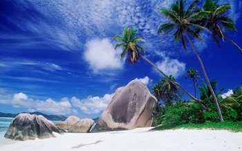 Earth - Beach Wallpapers and Backgrounds ID : 19747