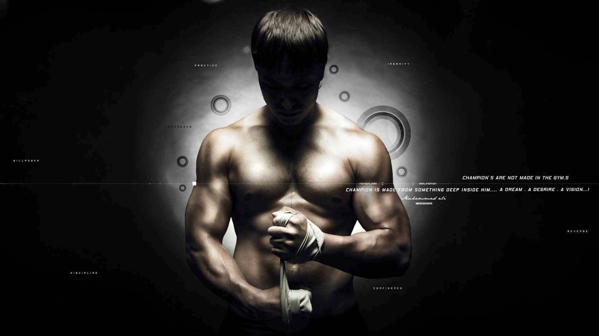 Mixed martial arts hd wallpaper background image 1920x1080 id wallpapers id202715 thecheapjerseys Choice Image