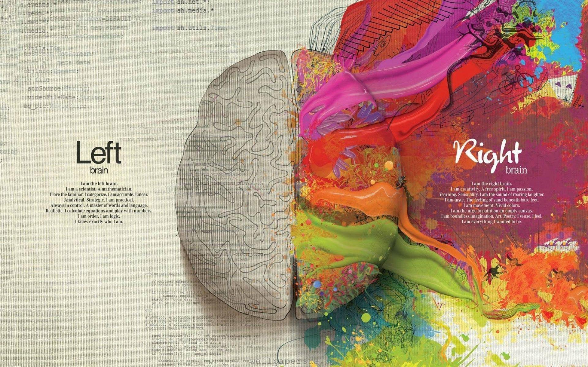 Anatomy HD Wallpaper | Background Image | 1920x1200 | ID:203679 ...