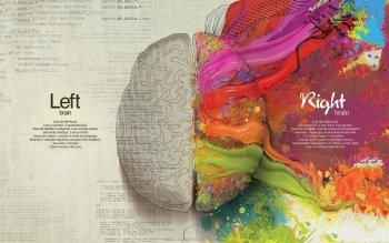 60 Anatomie Hd Wallpapers Hintergrunde