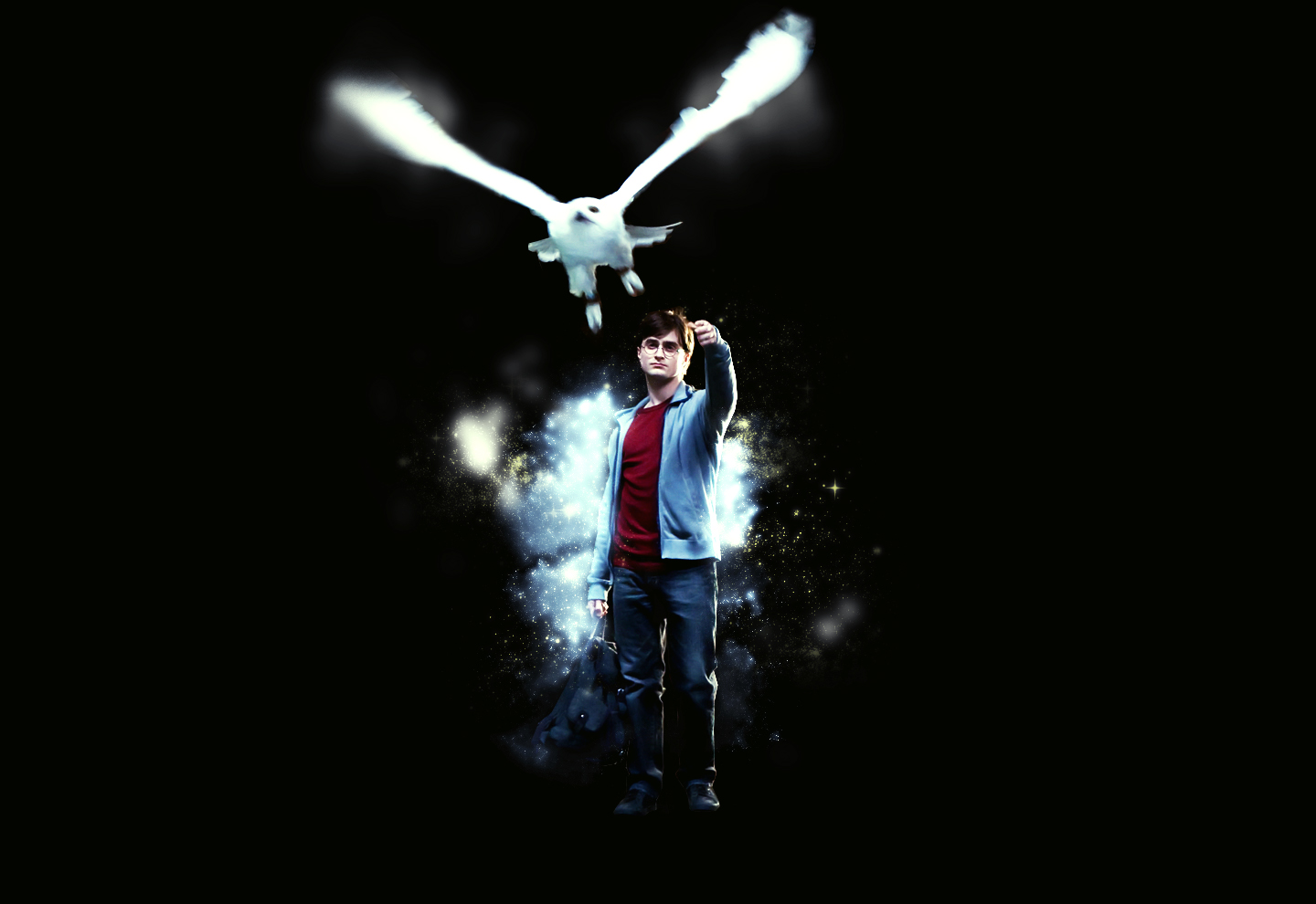 Harry Potter And The Deathly Hallows: Part 1 Wallpaper And