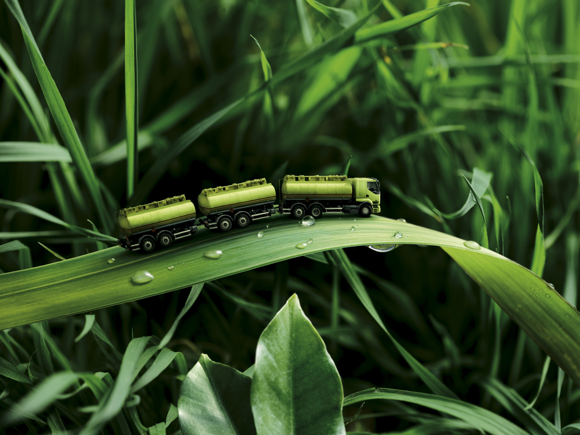 Photography - Manipulation  Grass Water Drop Truck Toy Green Wallpaper