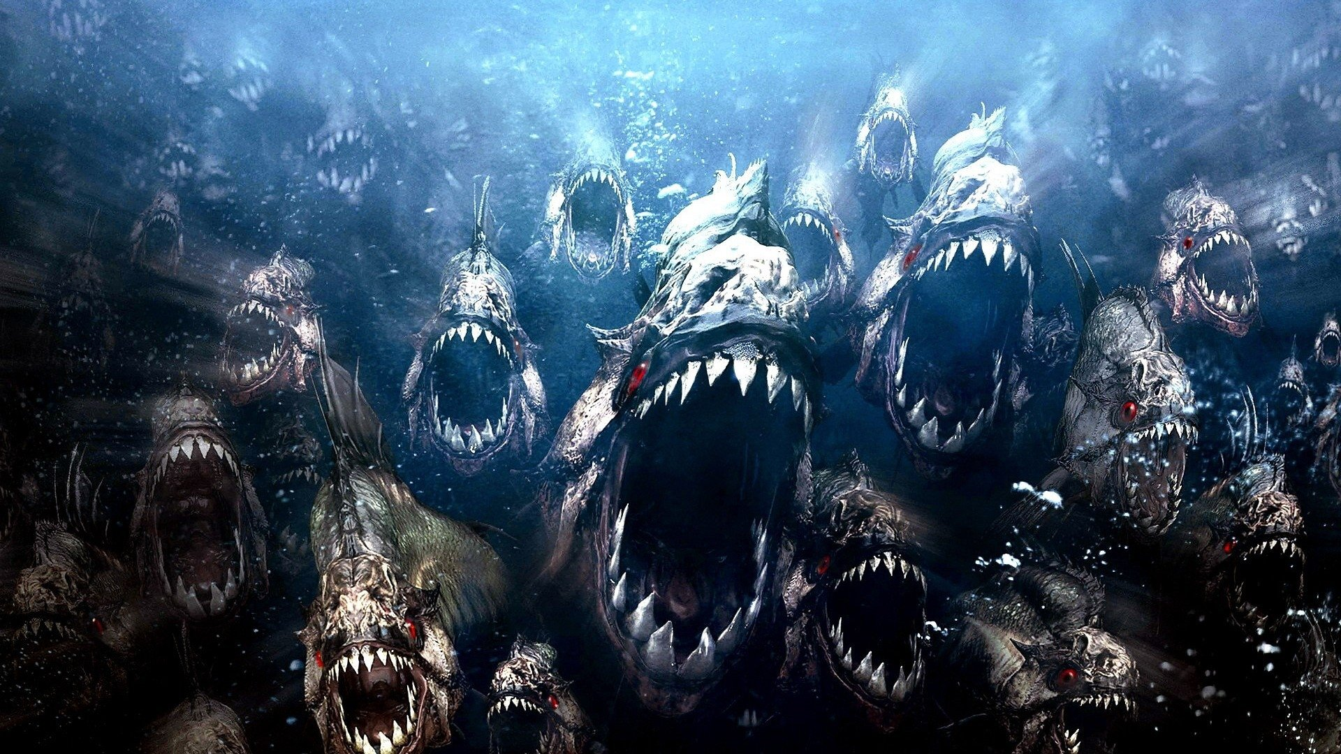 9 piranha hd wallpapers | background images - wallpaper abyss