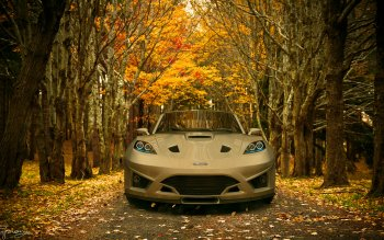 Vehicles - Ford Wallpapers and Backgrounds ID : 213729