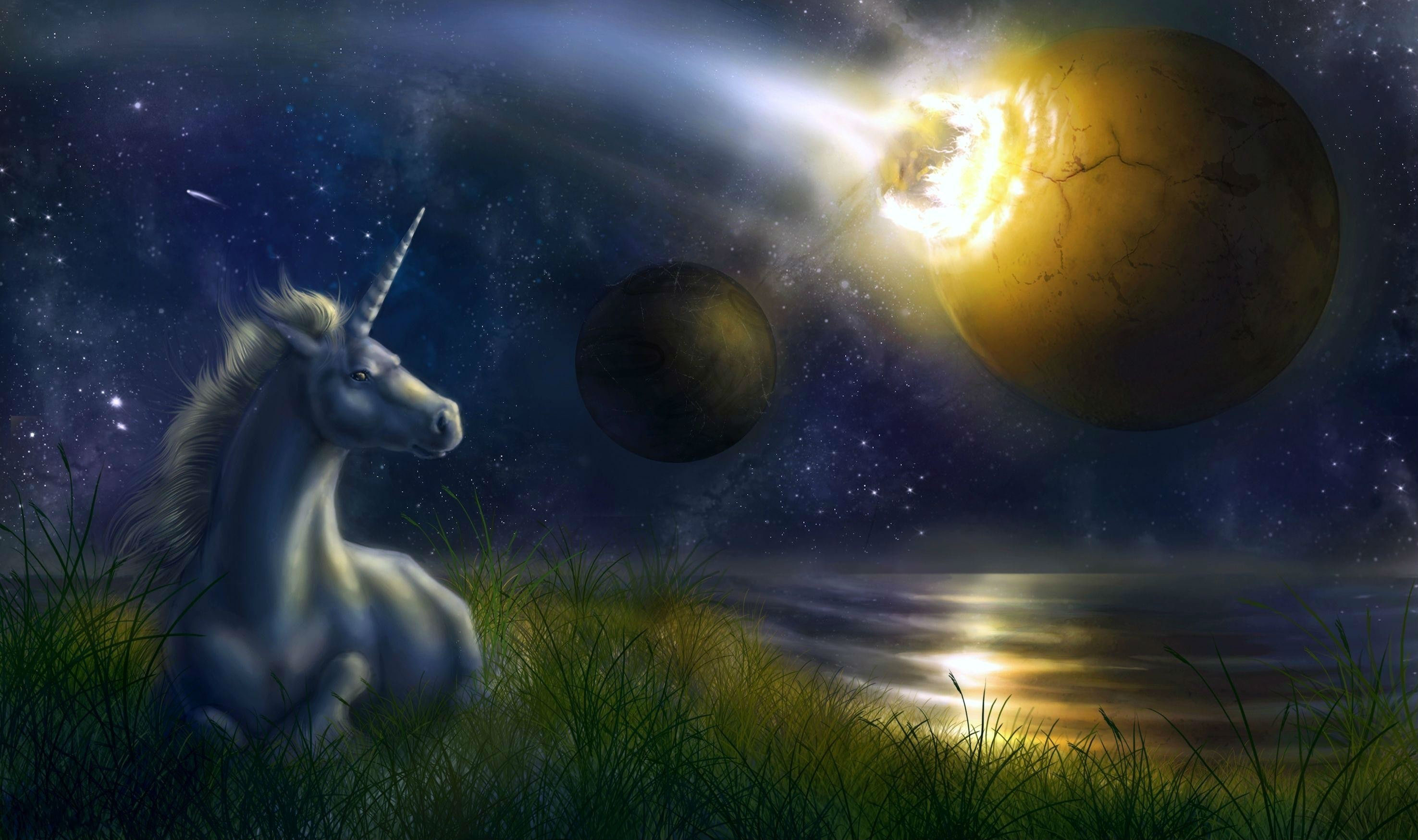 Hd wallpaper unicorn - Hd Wallpaper Background Id 214449 2951x1749 Fantasy Unicorn