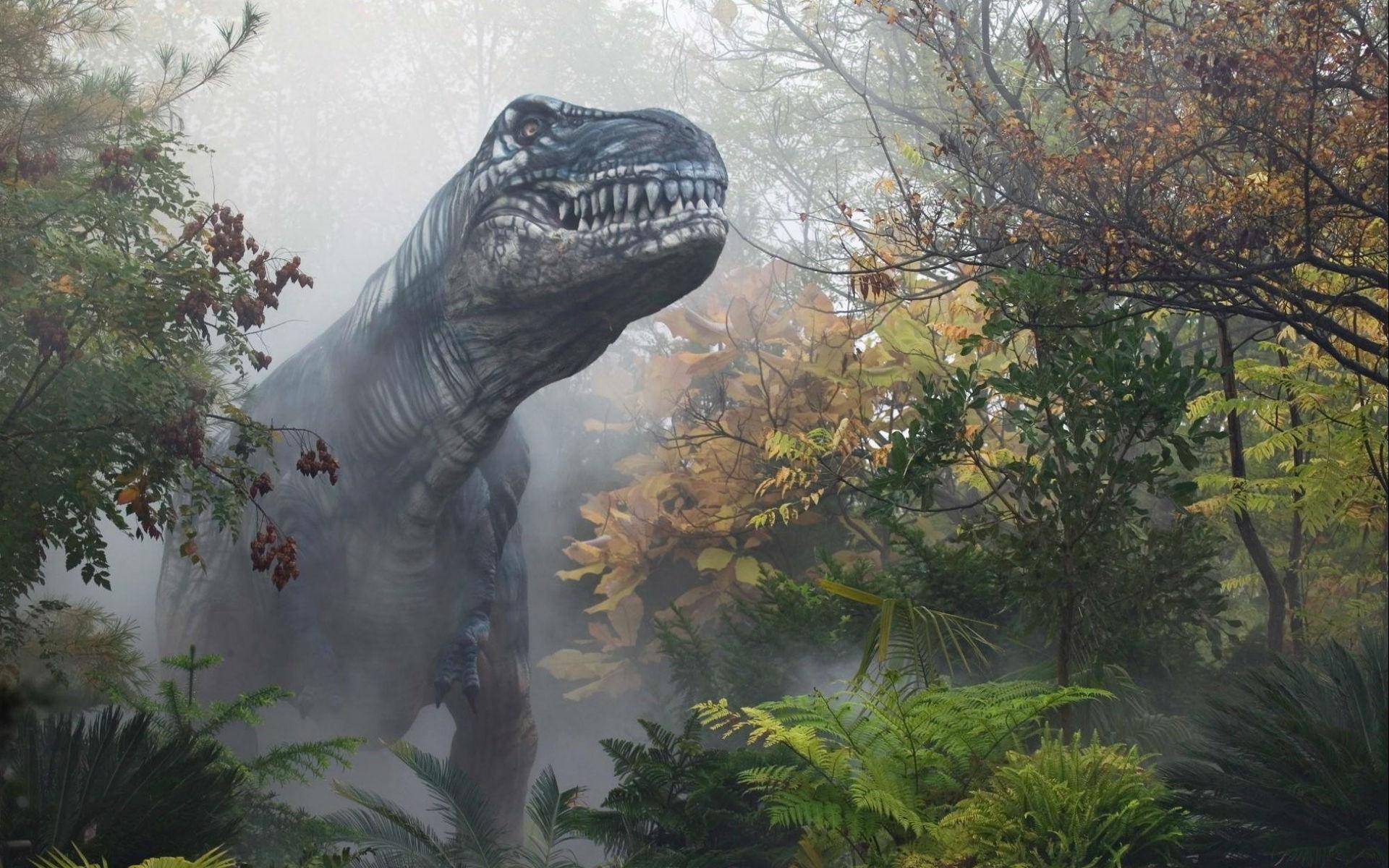 dinosaur computer wallpapers desktop backgrounds