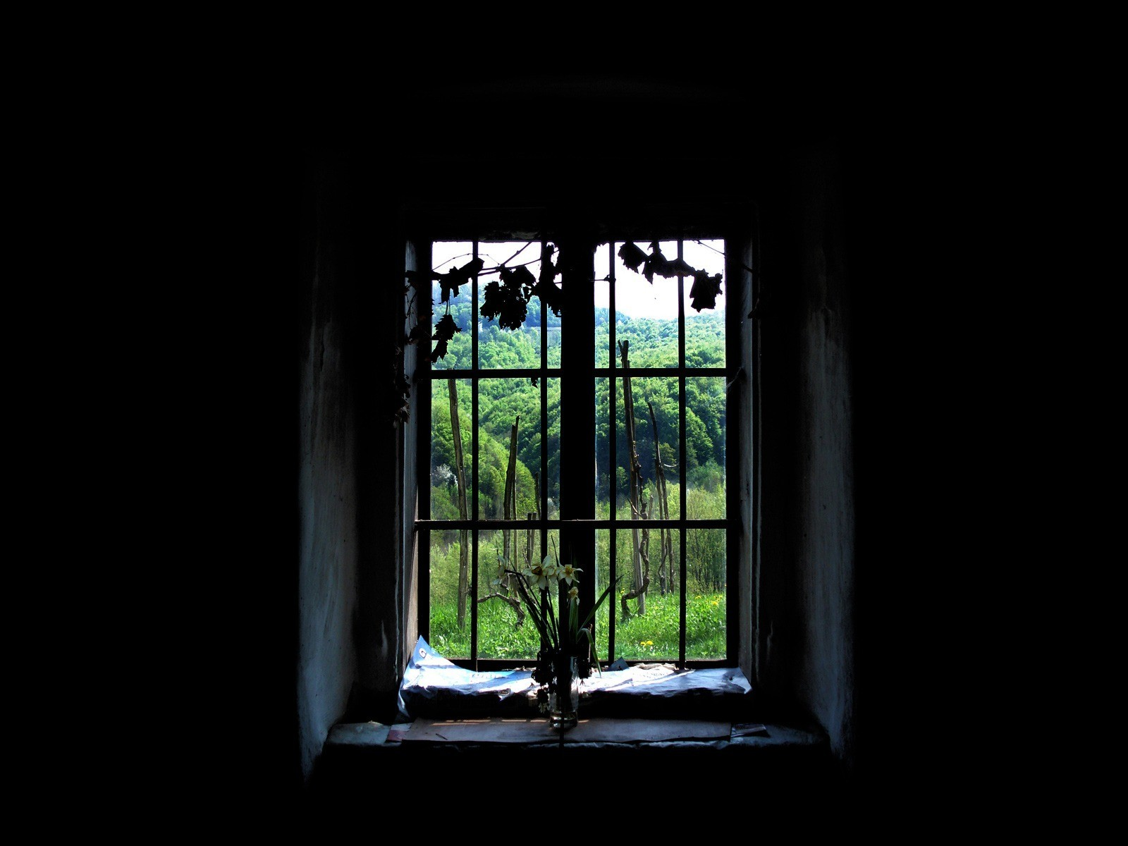 Window wallpaper and background image 1600x1200 id 215919 for Fenster 400x400