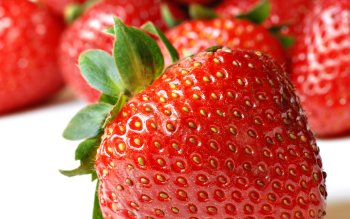Alimento - Strawberry Wallpapers and Backgrounds ID : 215655