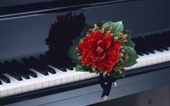 Music - Piano Wallpapers and Backgrounds ID : 216227