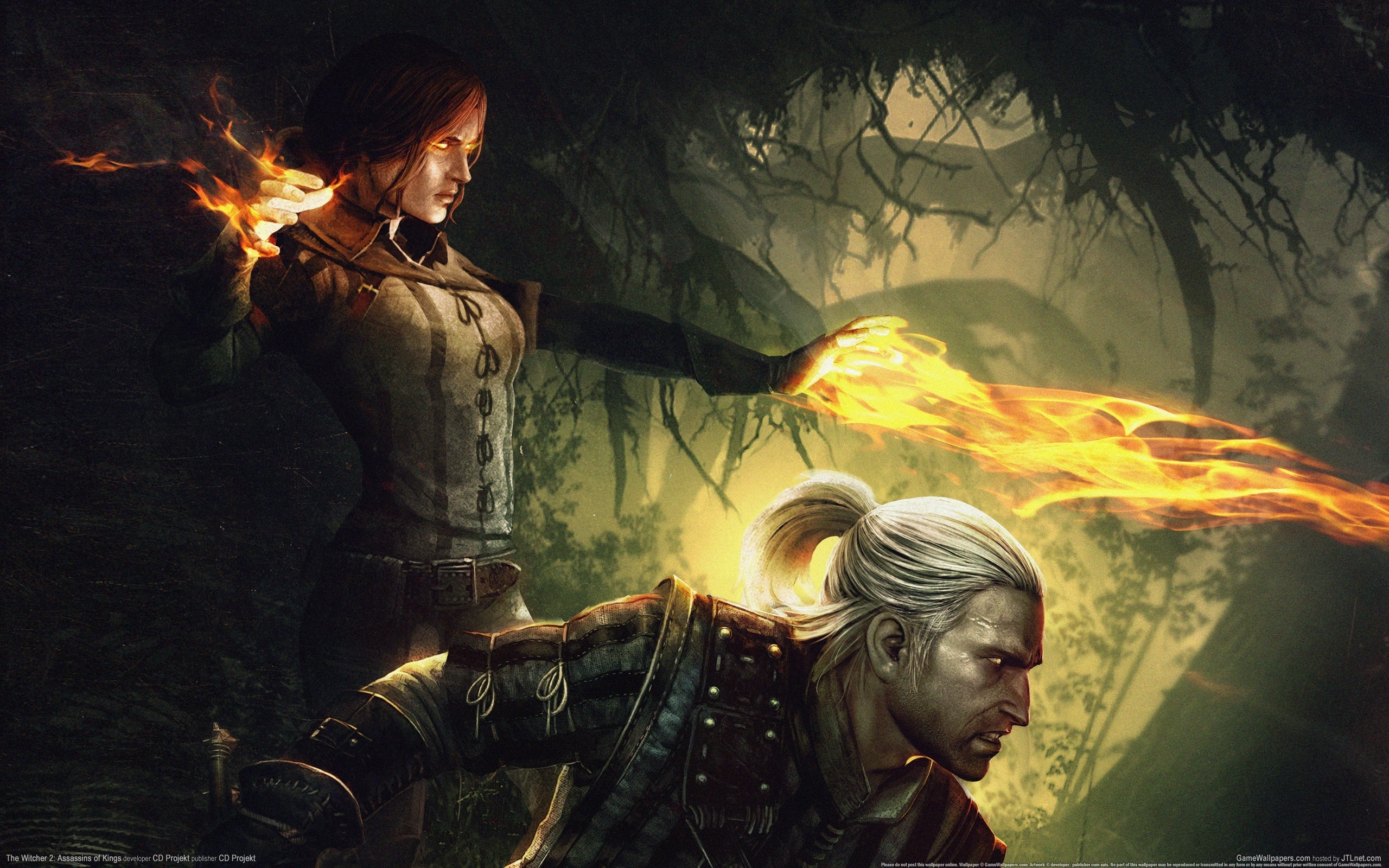 The Witcher 2: Assassins Of Kings HD Wallpaper ...