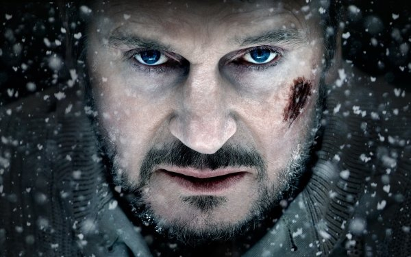Movie The Grey Liam Neeson HD Wallpaper   Background Image