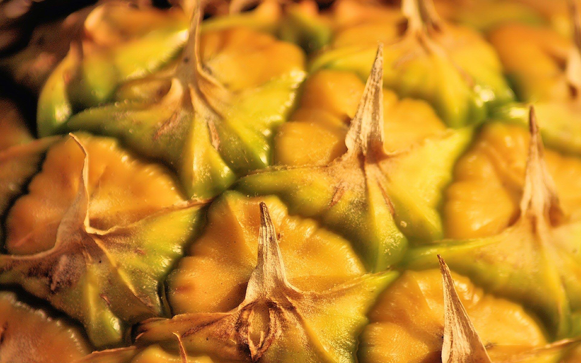 25 Pineapple HD Wallpapers