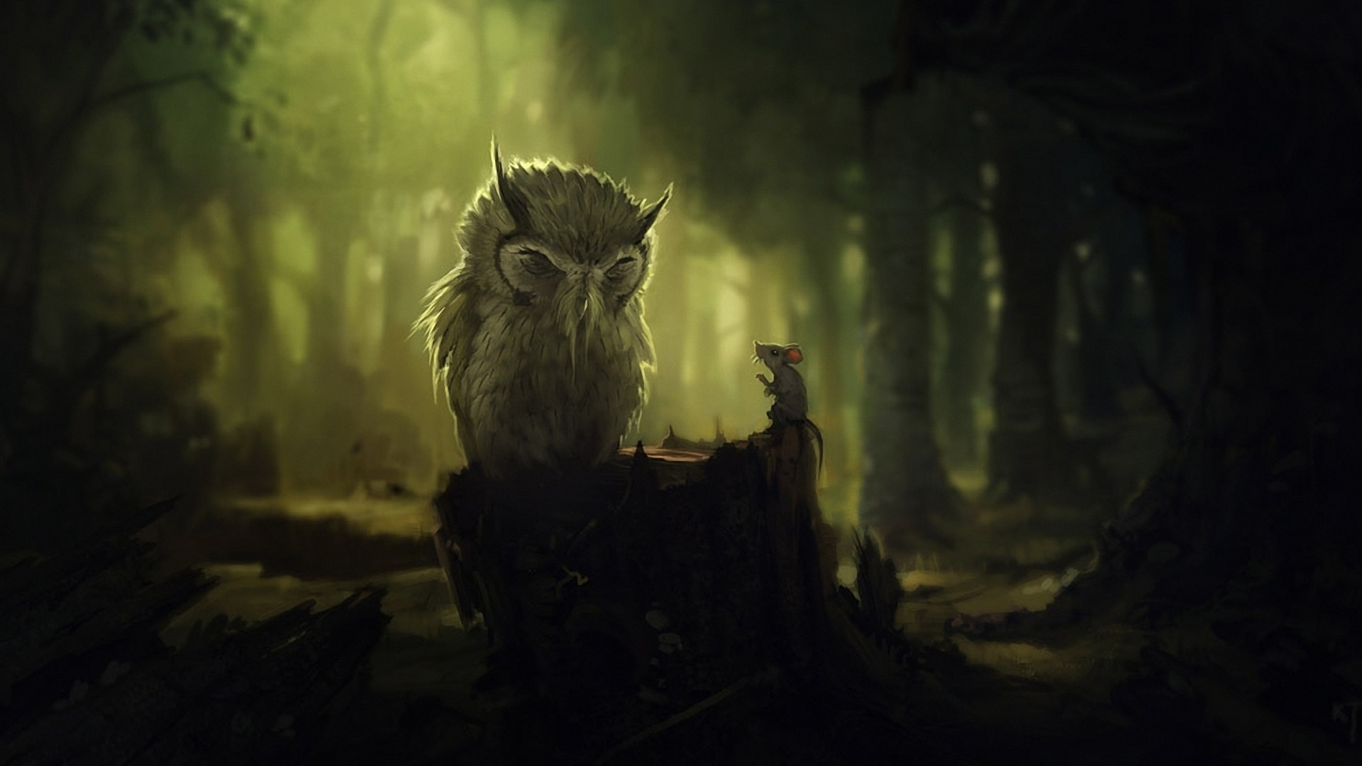 Animal - Owl  Cartoon Wallpaper