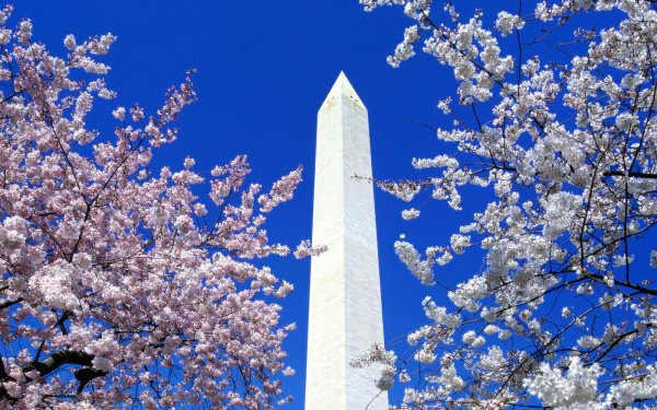 Man Made Monument Monuments HD Wallpaper   Background Image