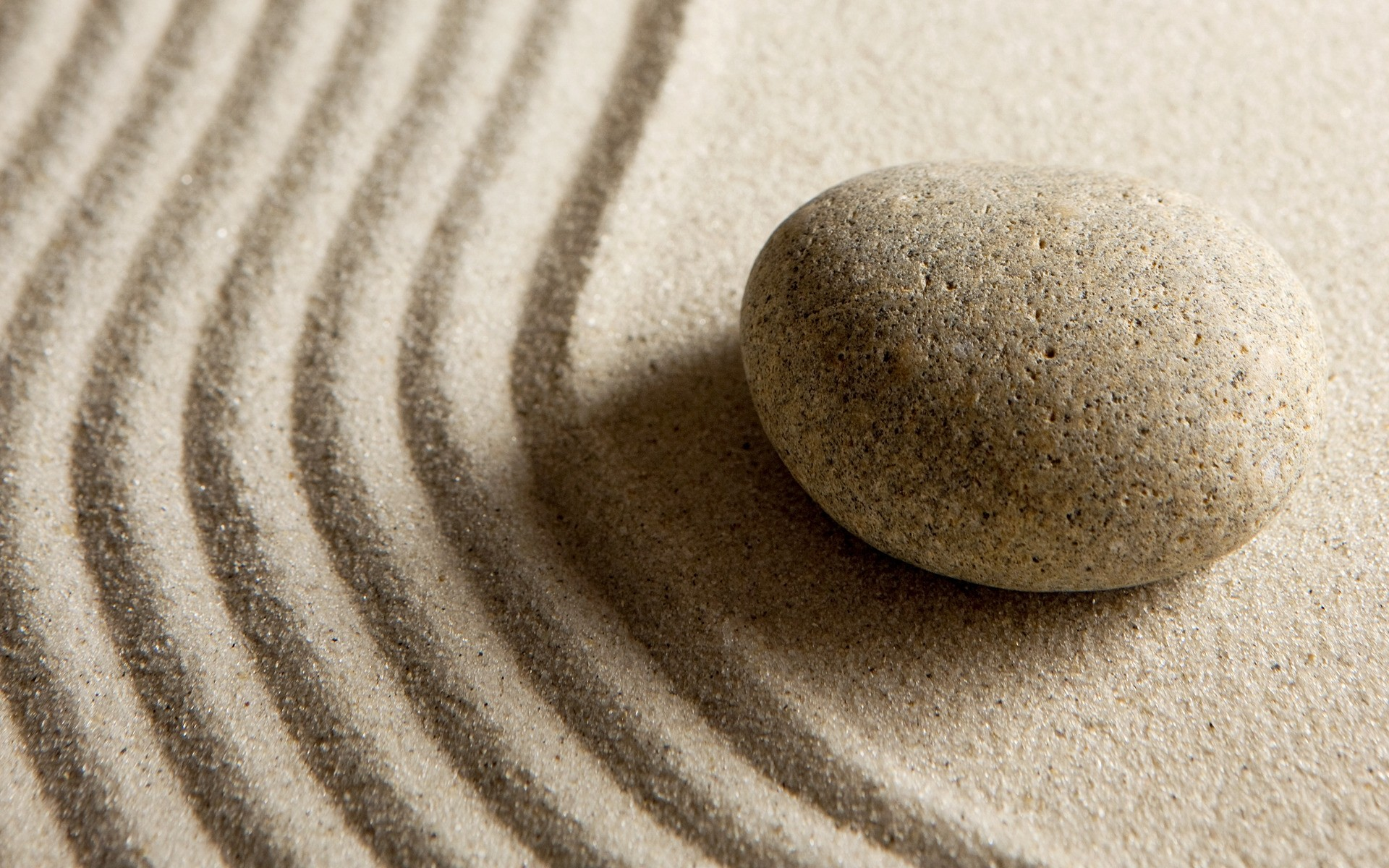 Zen Full HD Wallpaper and Background | 1920x1200 | ID:235209