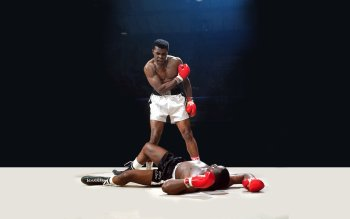 Sports - Boxing Wallpapers and Backgrounds ID : 237229