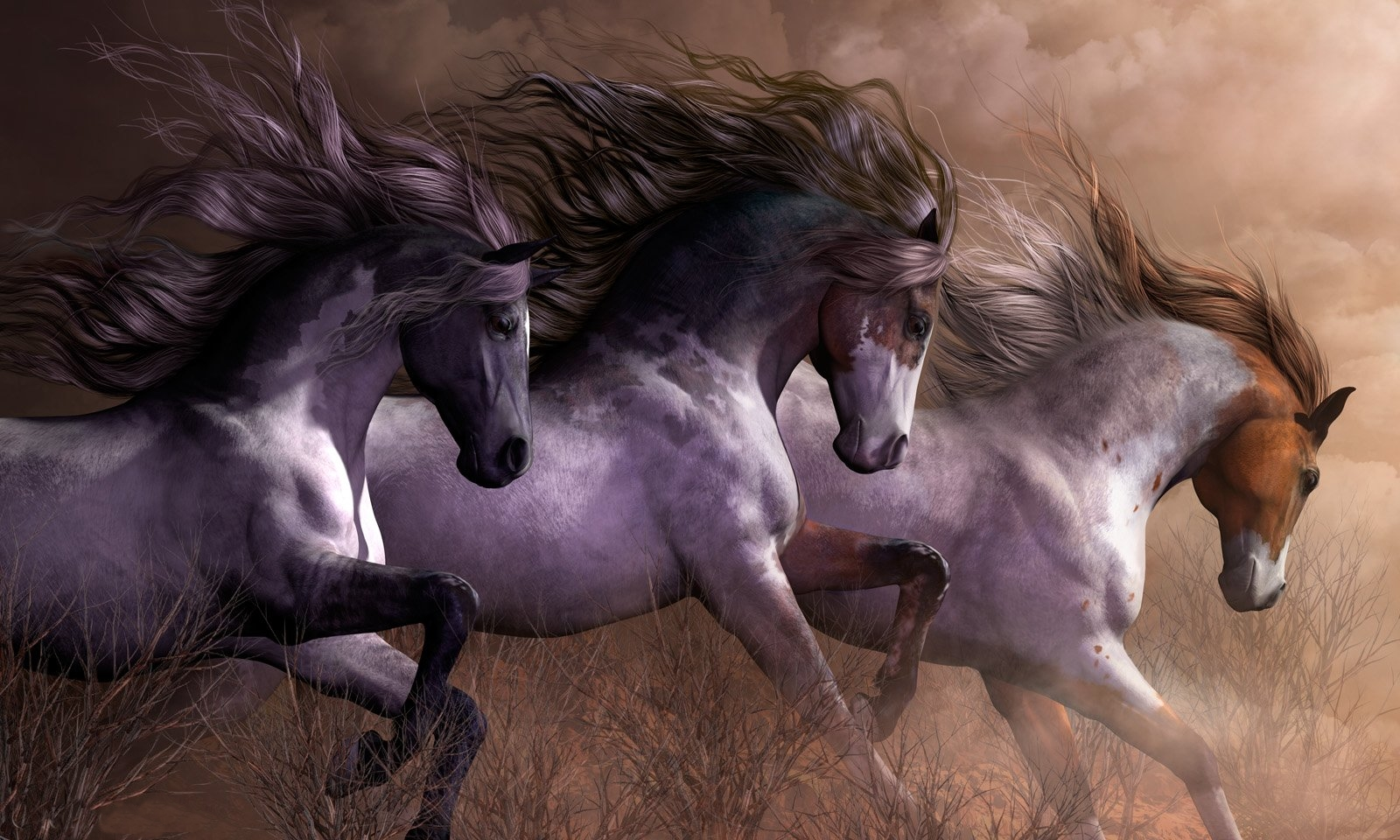 Must see Wallpaper Horse Laptop - 241727  HD_833020.jpg