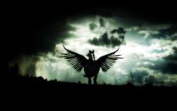 Fantasy - Pegasus Wallpapers and Backgrounds ID : 245919