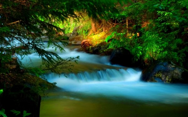 Earth Close Up Creek HD Wallpaper | Background Image