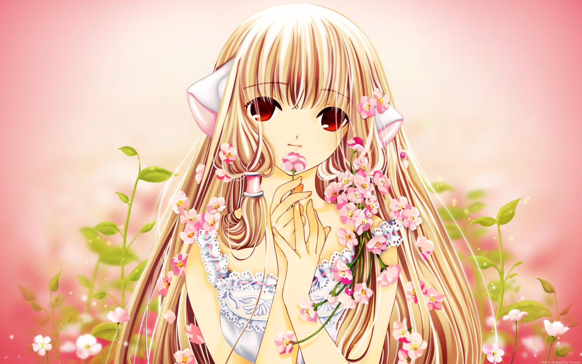 Wallpapers ID:246725