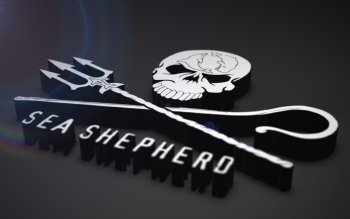 Man Made - Sea Shepherd Wallpapers and Backgrounds ID : 246587
