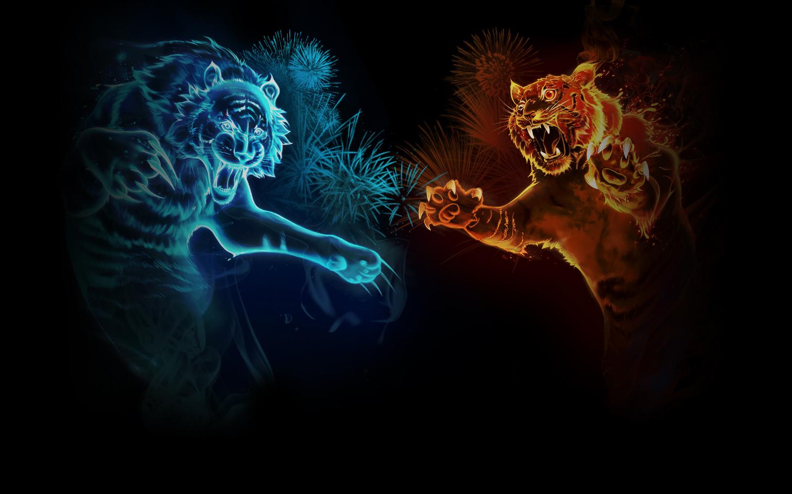 8k Animal Wallpaper Download: Tiger Wallpaper And Background Image